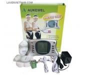 Máy xung điện Aukewell VIP Model 2 kênh 8 điện cực