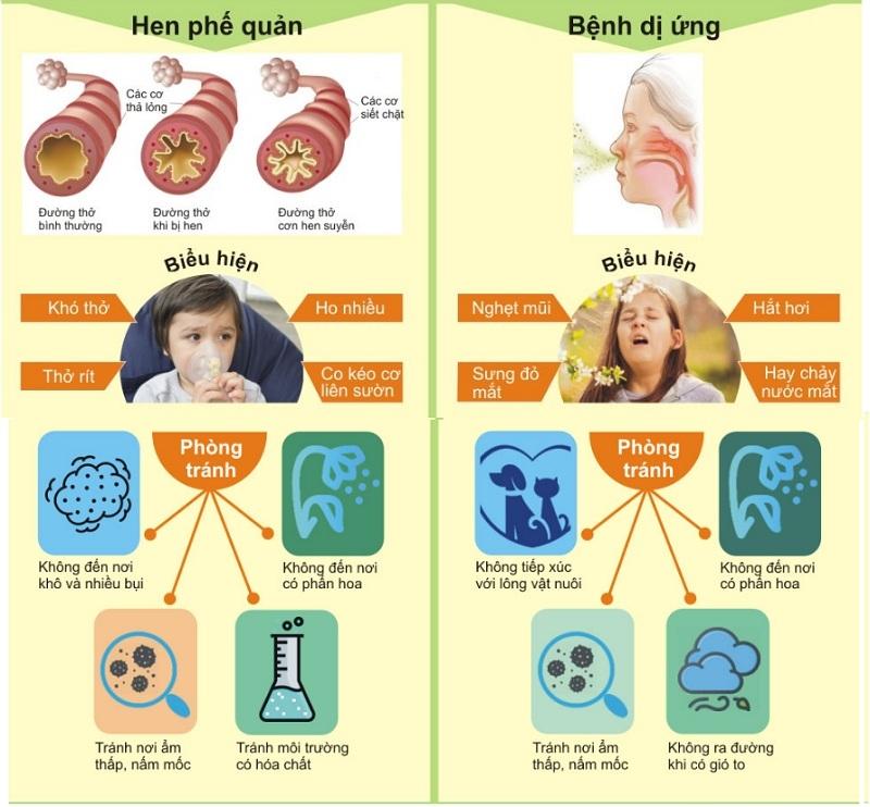 cách phòng chống bệnh Hen phế quản và viêm mũi dị ứng