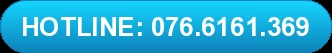 Hotline Lavenvietnam