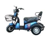 Xe điện 3 bánh X3-LV1 cho người già, người khuyết tật chân