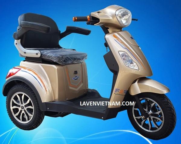 Xe điện 3 bánh Kalima X3-LV10F2 màu cafe