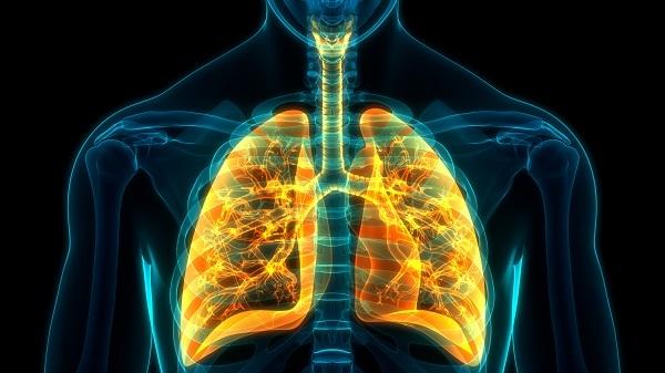 Các nhà nghiên cứu, bao gồm cả Tiến sĩ Mark Metersky của UConn, đã có được cái nhìn sâu sắc quan trọng về sự tồn tại dai dẳng của căn bệnh chết người được gọi là COPD.