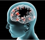 Tế bào gốc điều trị bệnh thần kinh