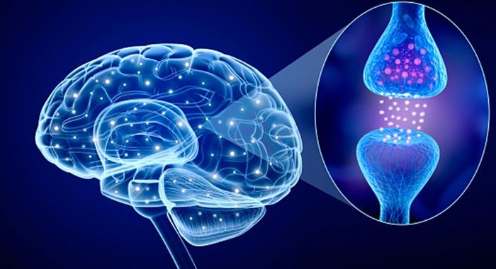 Sự thoái hóa thần kinh trong bệnh Parkinson