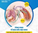 Bổ sung dinh dưỡng cho tế bào và bảo vệ tế bào gốc điều trị bệnh đái tháo đường