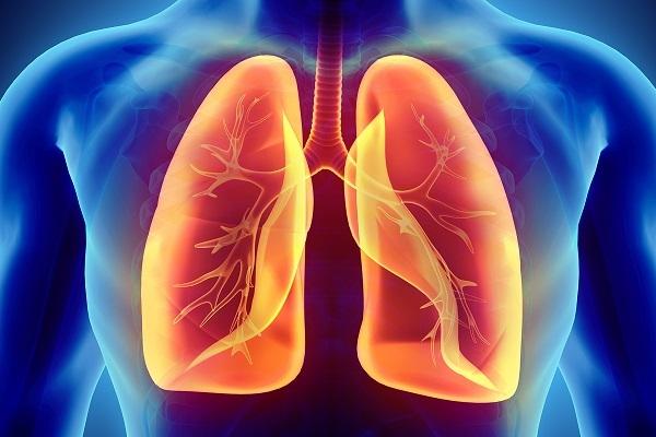 Tế bào gốc bất thường làm cơ sở cho sự tồn tại của COPD